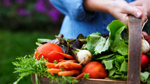 5 Easy Ways to Get More Veggies in Your Diet